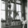 amherst_record_jones_library_avocado_plant.jpg