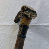 walking stick detail.JPG