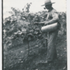 johnson_clifton_hand_sprays_the_grapevines.jpg