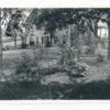 jones_library_193307_garden.jpg