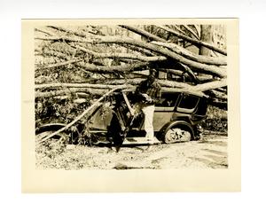 hurricane_1938_photos_wr_browns_automobile_s_pleasant_st_sept_22.jpg